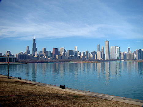 Rosanne Jordan - Chicago Skyline Reflection