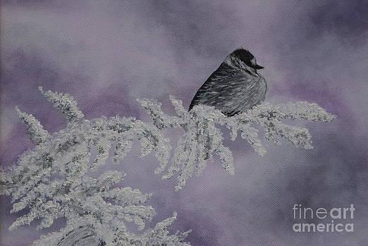 Chickadee Snow Bird by William Ohanlan