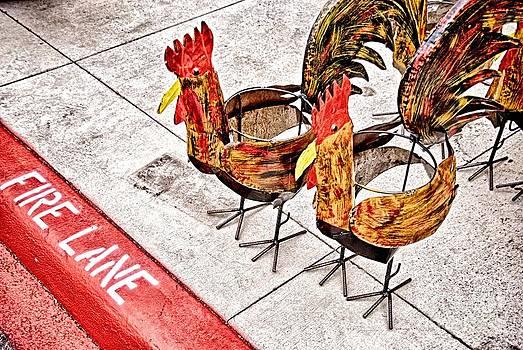 Ken Williams - Chicken Crossing