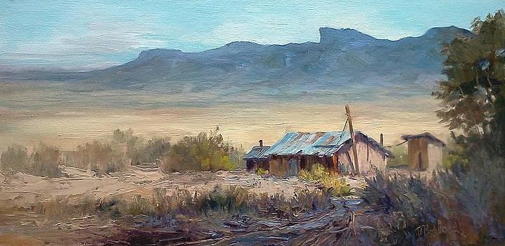 Chisos Mountains-desert view by Tina Bohlman