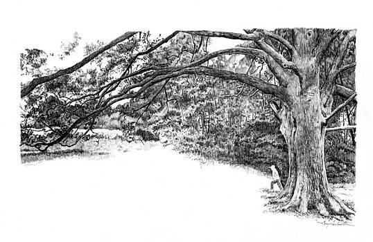 Chris's Tree by Gary Gackstatter