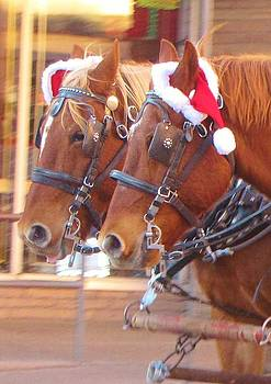 Christmas Horses by Feva  Fotos