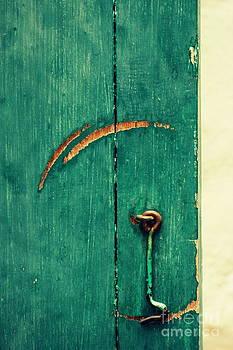 Circle of life by Vishakha Bhagat