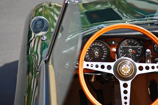 Classic Green Jaguar Artwork by Shane Kelly
