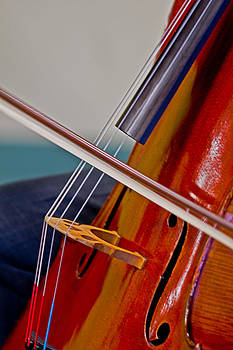 Classical Strings by Felix Santos