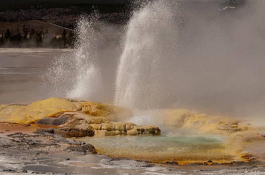 Clepsydra Geyser Yellowstone National Park by Bruce Gourley