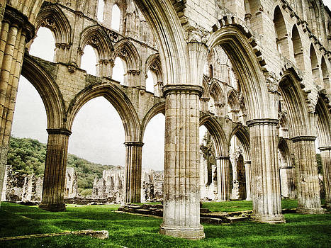 Cloisters of Rievaulx Abbey by Sarah Couzens