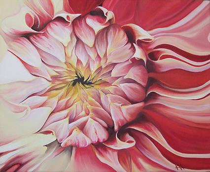 Closer Look by Karen Hurst