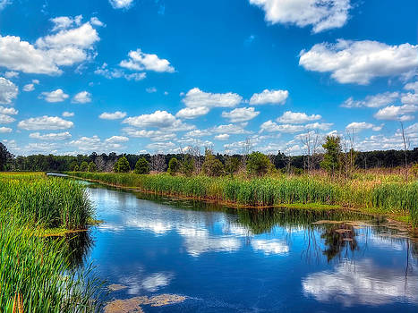 Cloud Reflections Caw Caw Park by Jenny Ellen Photography