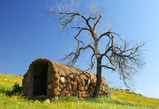 Cobbled Prairie Shelter by Terry Hollensworth-Rutledge