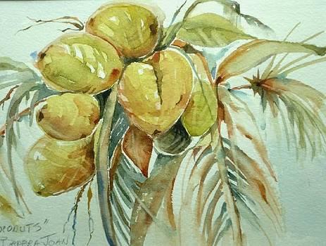 Coconuts in the Keys by Barbra Joan