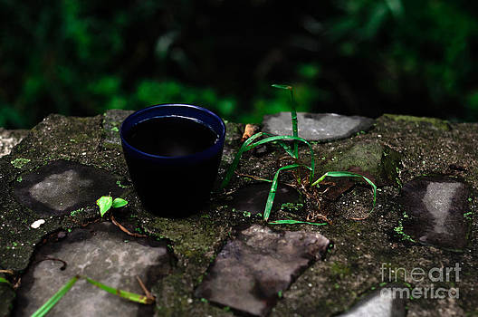 Coffee on the rock  by The Phoblographer