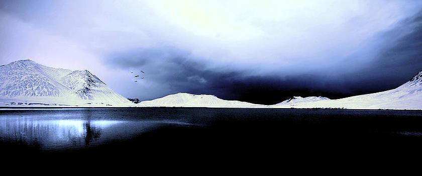 Cold Dark Winter by Stefan  Gudmundsson