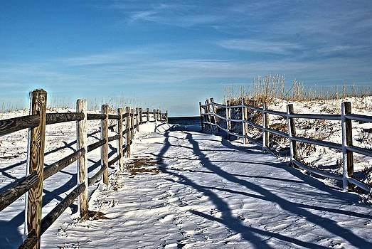 Cold Sandy Walk by Timothy Donahue