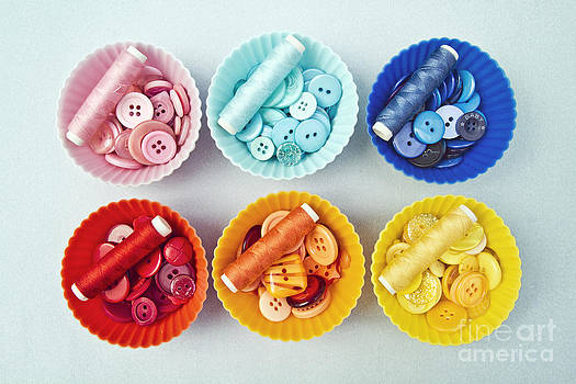 Color filled cupcake cases by Catherine MacBride