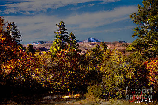 Colorado In The Fall by Dinah Anaya