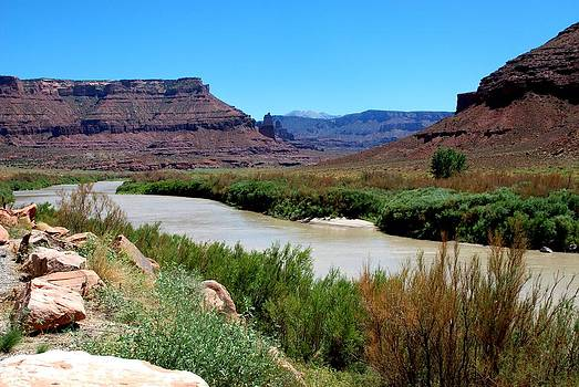 Colorado River  by Dany Lison