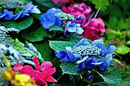 Colorful Flowers by Michael Austin