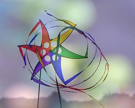 Colors in the Wind by Pamela Rose Hawken