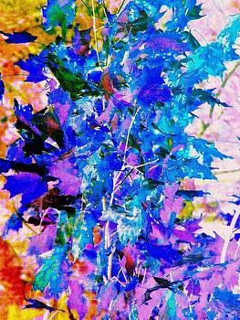Colors by Katina Cote
