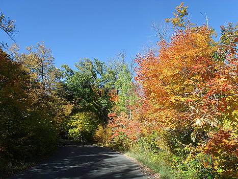Colors Splashed Fall Roadway by Brian  Maloney