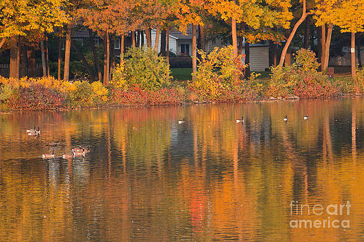 Colors to dive into by Christine Amstutz