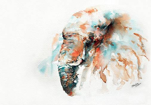 Colours of Samburu by Stephie Butler