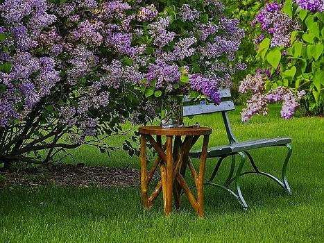 Come Sit With Me by Linda Gesualdo