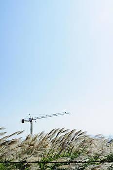 Construction Site by Lawren Lu