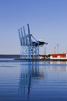 Container Craines At The Port by Douglas Orton