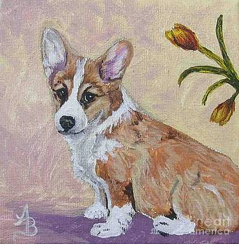 Corgi Puppy with Tulips by Ann Becker