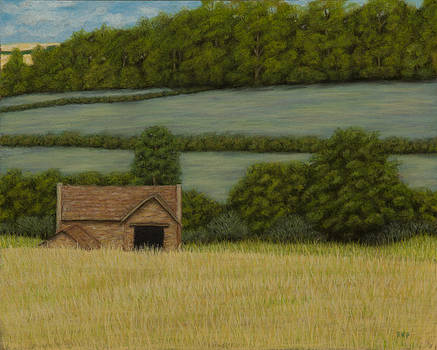 Cotswold countryside by Rebecca Prough