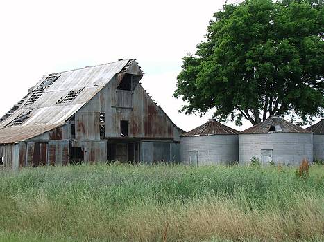 Country Barn by Michelle Worring