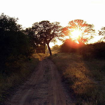 Ramona Johnston - Country Road Take Me Home