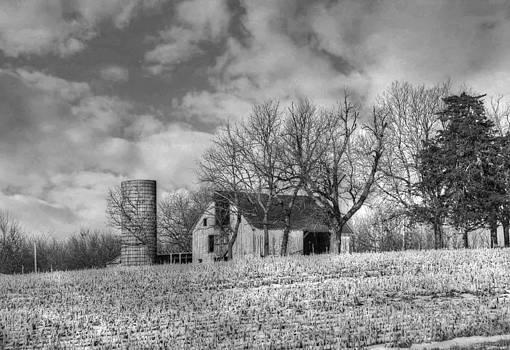 Country Scene by Linda Gesualdo