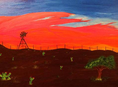 Country Sunset by Tyler Martin