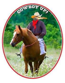 James Geddes - Cowboy Bluez