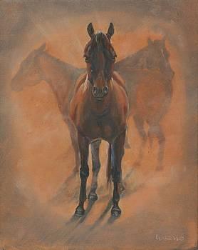 Cowponies in the Dust by Elizabeth Lane