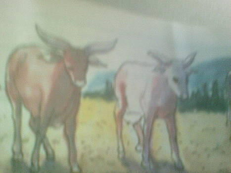 Cows by OKORO  Judith