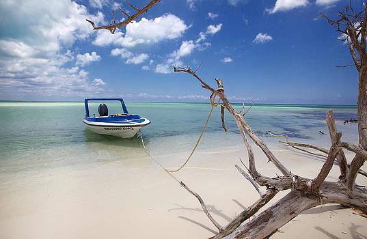 Cozumel Mexico - Drift Away by Jonathan Bartlett