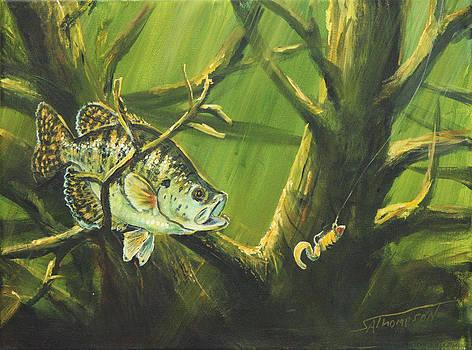 Crabbie Bass by Scott Thompson