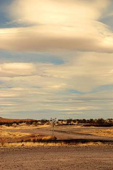 Susanne Van Hulst - Cross Road in New Mexico