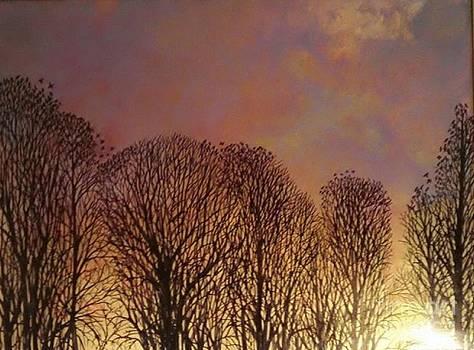 Crows eve by Maria Elena Gonzalez