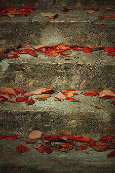 Crvena by Vail Joy