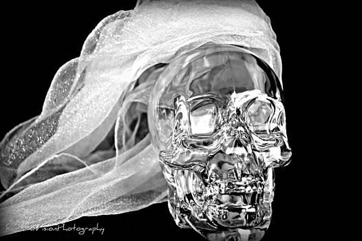 Crystal Skull by Rhonda DePalma