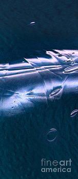 Peter Piatt - Crystalline Entity Panel 1