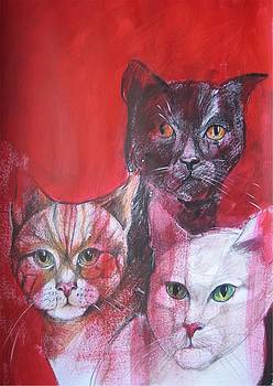 Curious Cat Trio by Brigitte Hintner