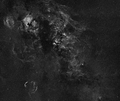 Cygnus constellation nebulosity highresolution by Andre Van der Hoeven