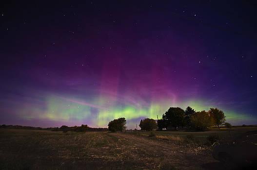 Dance of the Auroras by Jennifer Brindley