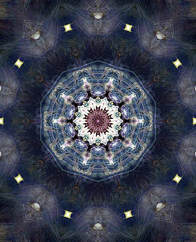 Dance Within by Zannie B